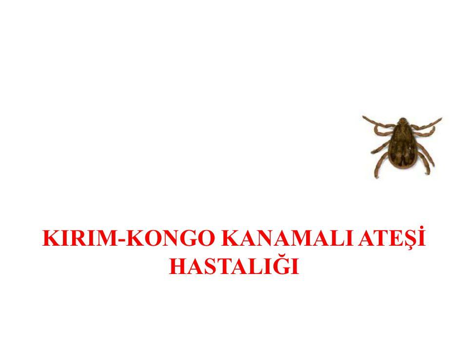 KIRIM-KONGO KANAMALI ATEŞİ HASTALIĞI