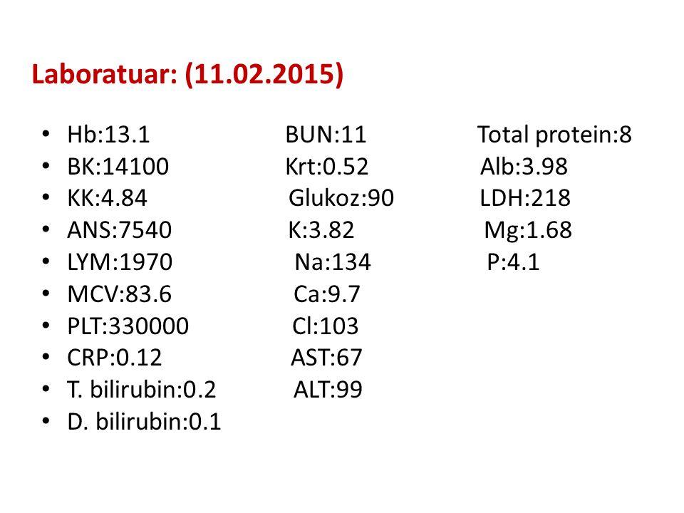 Laboratuar: (11.02.2015) Hb:13.1 BUN:11 Total protein:8 BK:14100 Krt:0.52 Alb:3.98 KK:4.84 Glukoz:90 LDH:218 ANS:7540 K:3.82 Mg:1.68 LYM:1970 Na:134 P:4.1 MCV:83.6 Ca:9.7 PLT:330000 Cl:103 CRP:0.12 AST:67 T.