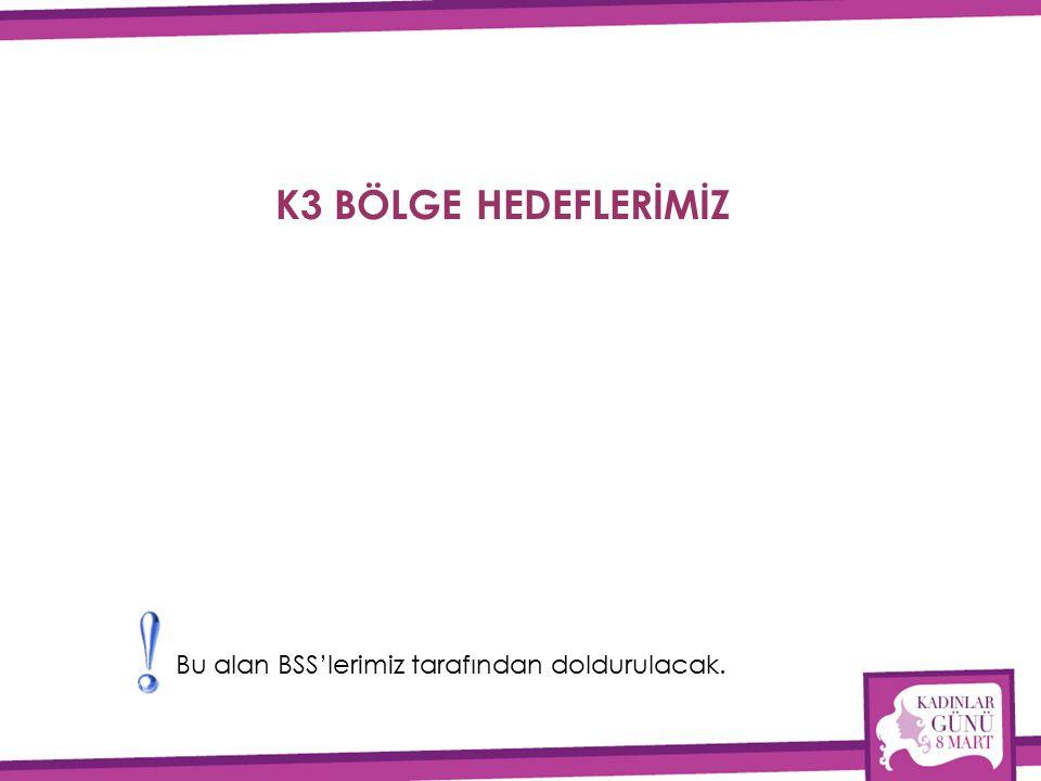 K3 BÖLGE HEDEFLERİMİZ Bu alan BSS'lerimiz tarafından doldurulacak.