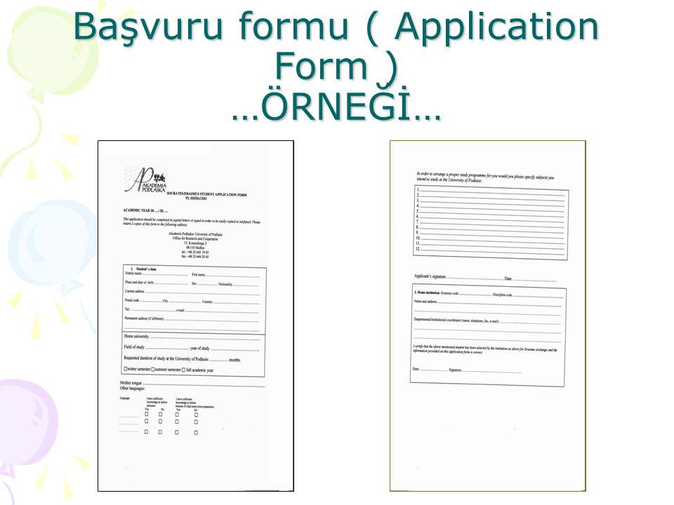 Üniversite başvuru formu ( application form) neleri kapsar .