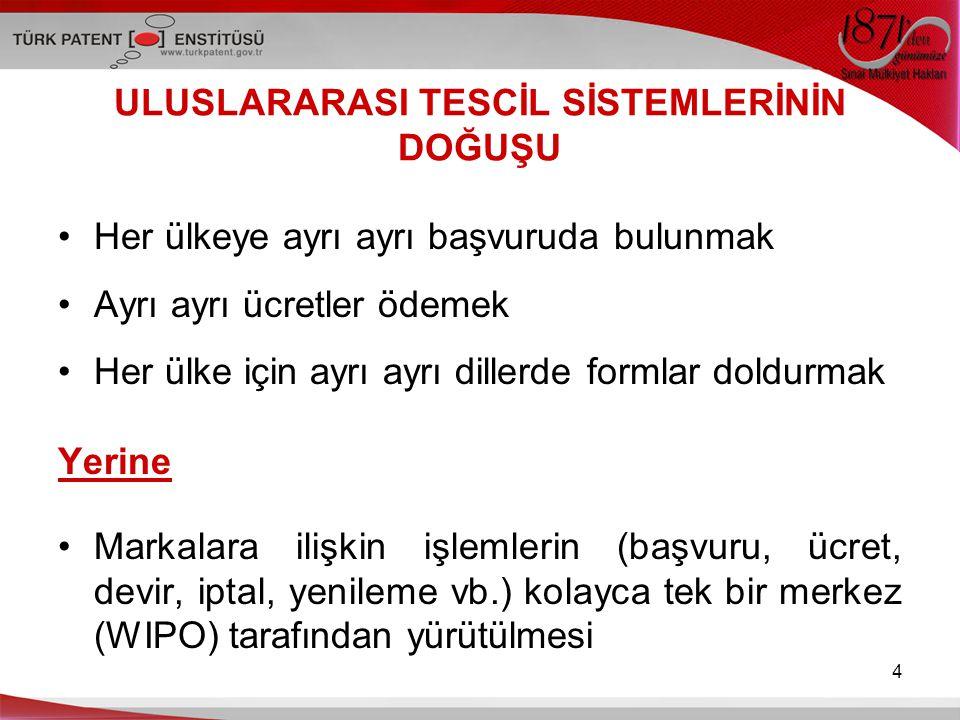 15 Sistemin İşleyişi (devamı) TPE aracılığıyla yapılan başvurular Türkiye'de tescilli ya da başvuru halinde bir marka olması gerekir.