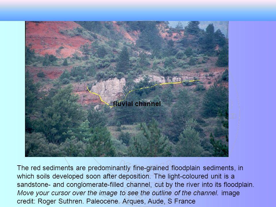 Kanal dolgu sedimentleri genel olarak çevresindeki sedimentlerden farklıdır.