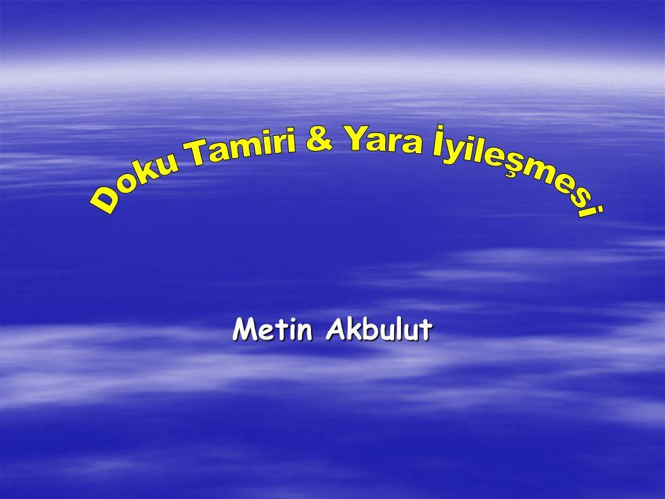 Metin Akbulut