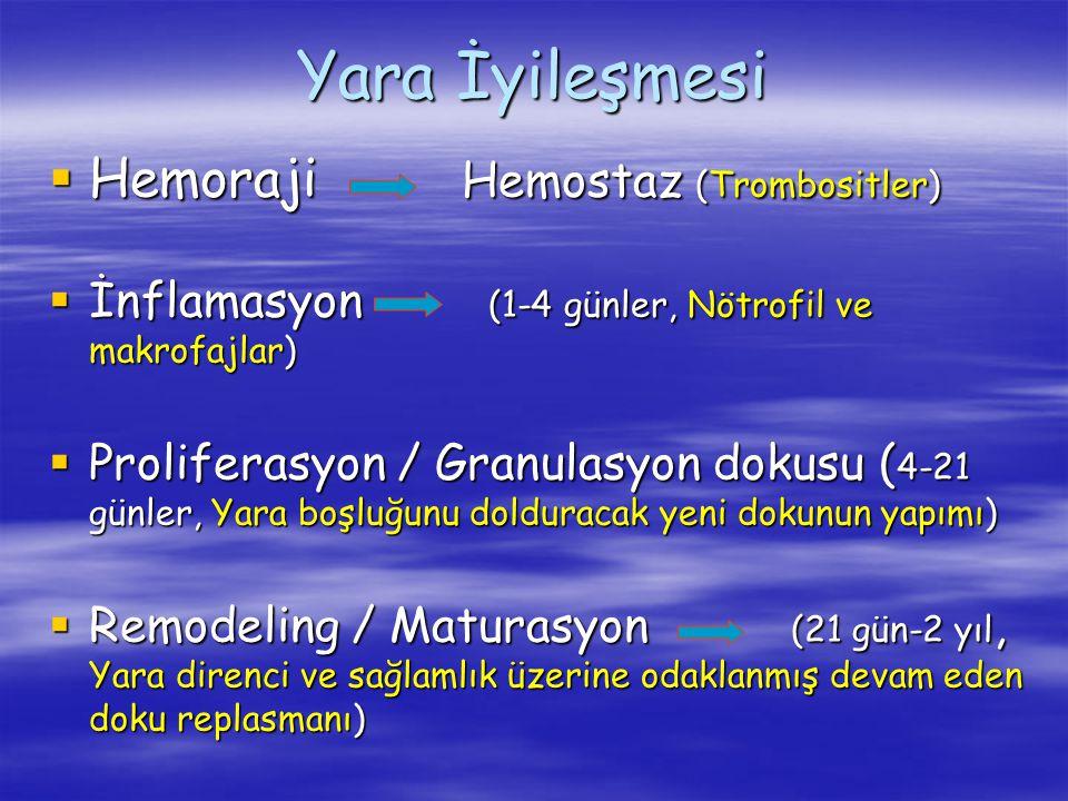 Yara İyileşmesi  Hemoraji Hemostaz (Trombositler)  İnflamasyon (1-4 günler, Nötrofil ve makrofajlar)  Proliferasyon / Granulasyon dokusu ( 4-21 gün