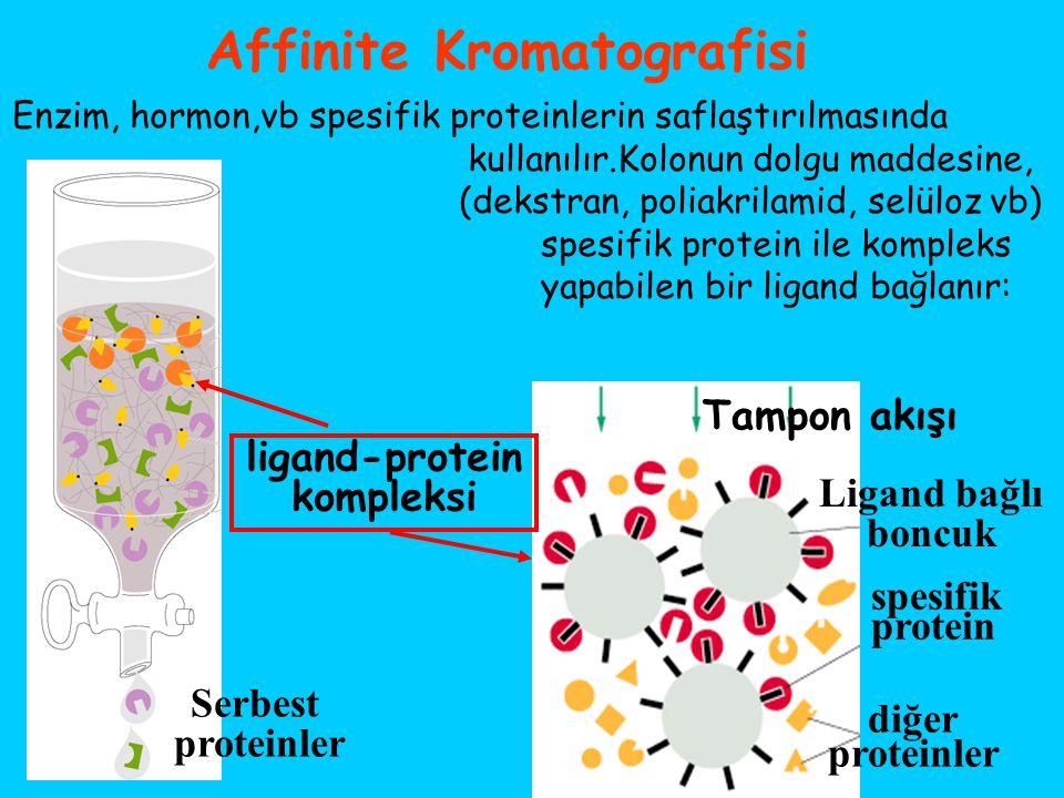 Affinite Kromatografisi Enzim, hormon,vb spesifik proteinlerin saflaştırılmasında kullanılır.Kolonun dolgu maddesine, (dekstran, poliakrilamid, selülo