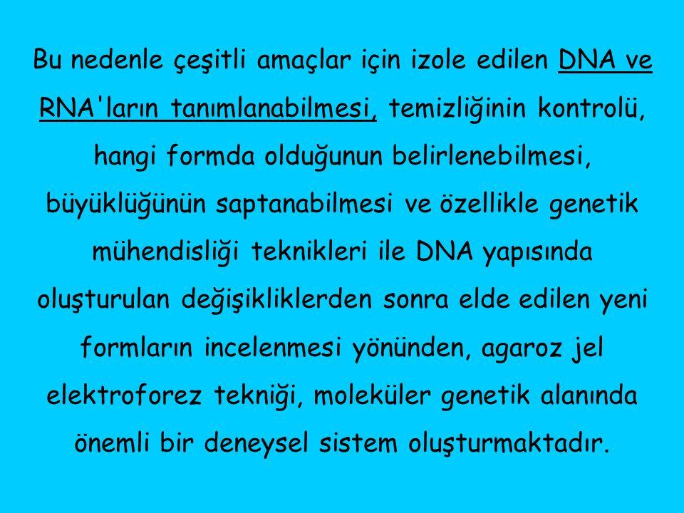 Bu nedenle çeşitli amaçlar için izole edilen DNA ve RNA'ların tanımlanabilmesi, temizliğinin kontrolü, hangi formda olduğunun belirlenebilmesi, büyükl