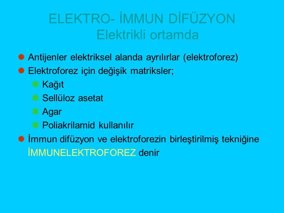 ELEKTRO- İMMUN DİFÜZYON Elektrikli ortamda  Antijenler elektriksel alanda ayrılırlar (elektroforez)  Elektroforez için değişik matriksler;  Kağıt 