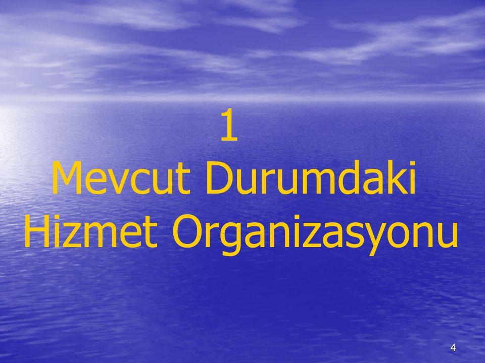 4 1 Mevcut Durumdaki Hizmet Organizasyonu