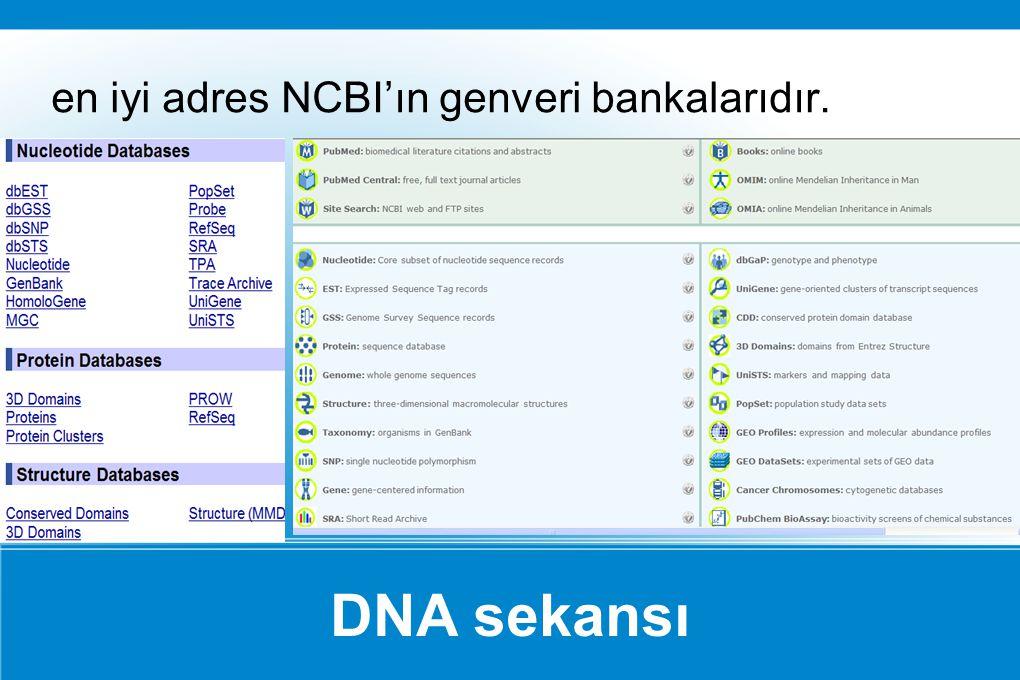 DNA sekansı en iyi adres NCBI'ın genveri bankalarıdır.