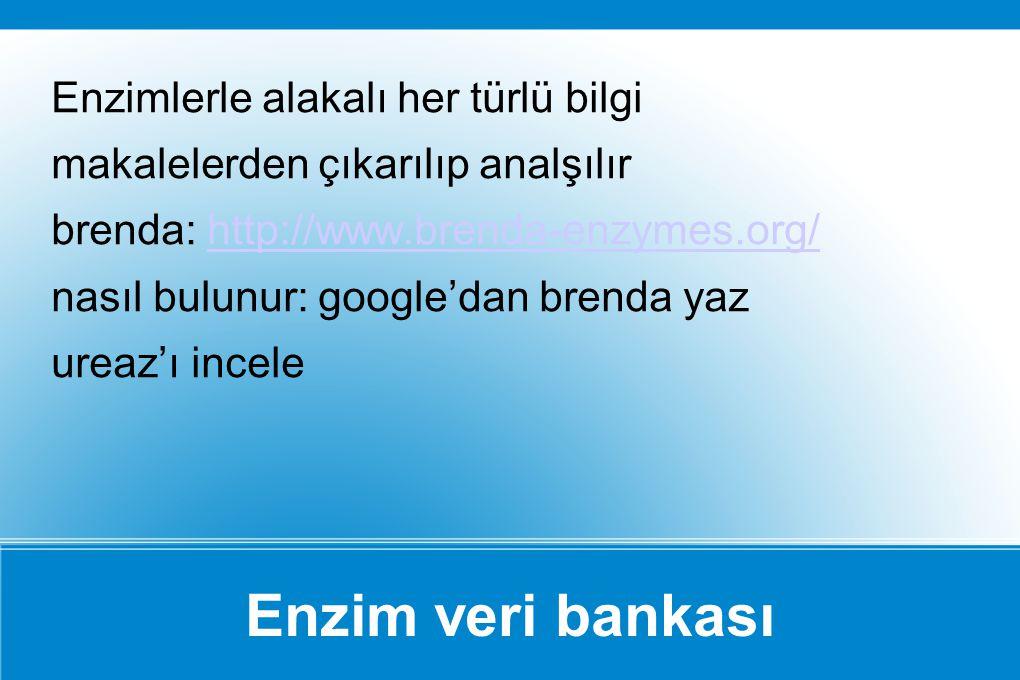 Enzim veri bankası Enzimlerle alakalı her türlü bilgi makalelerden çıkarılıp analşılır brenda: http://www.brenda-enzymes.org/http://www.brenda-enzymes
