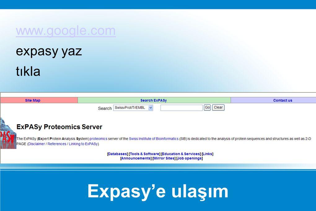 Expasy'e ulaşım www.google.com expasy yaz tıkla