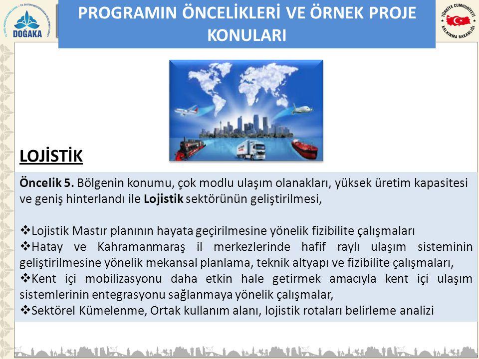 PROGRAMIN ÖNCELİKLERİ VE ÖRNEK PROJE KONULARI Öncelik 5.