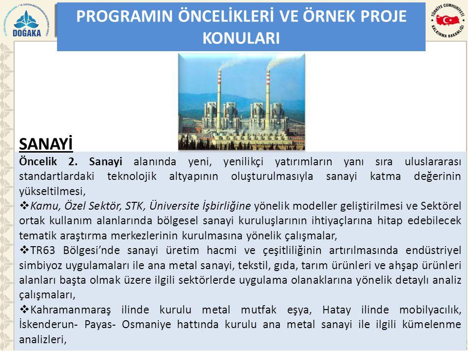 PROGRAMIN ÖNCELİKLERİ VE ÖRNEK PROJE KONULARI Öncelik 2.