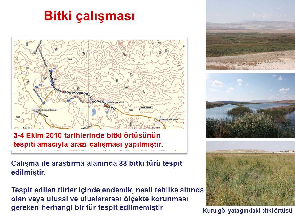 Kuş araştırması Alanda büyüklükleri 10.6 ha ile 0.24 ha arasında değişen 5 ayrı serbest su yüzeyi ile Çeltik belediyesi tarafından oluşturulan gölet bulunmaktadır.