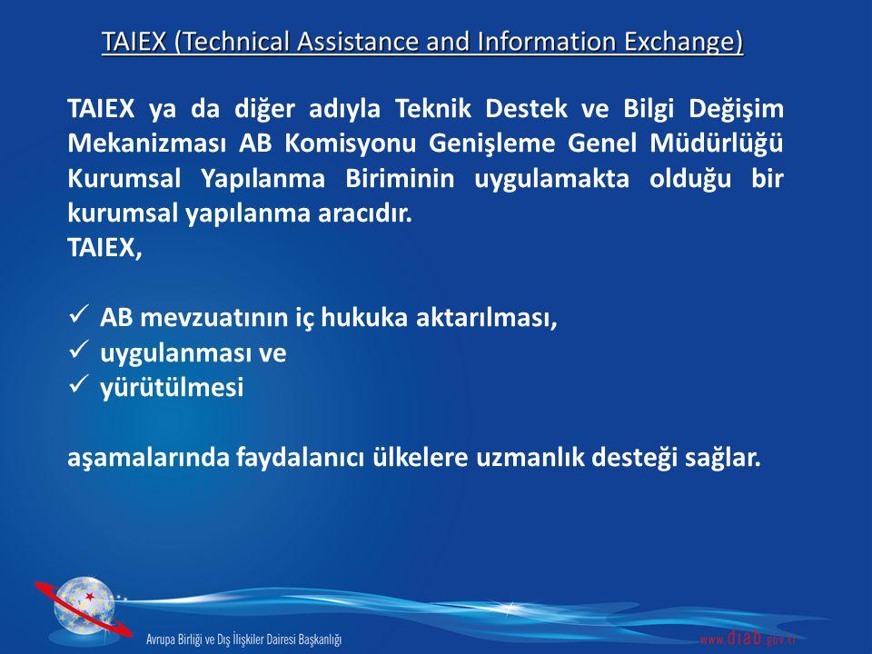 TAIEX ya da diğer adıyla Teknik Destek ve Bilgi Değişim Mekanizması AB Komisyonu Genişleme Genel Müdürlüğü Kurumsal Yapılanma Biriminin uygulamakta olduğu bir kurumsal yapılanma aracıdır.