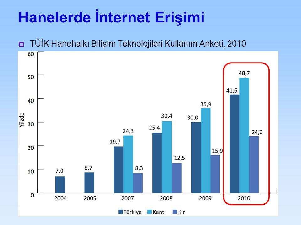 Hanelerde İnternet Erişimi  TÜİK Hanehalkı Bilişim Teknolojileri Kullanım Anketi, 2010