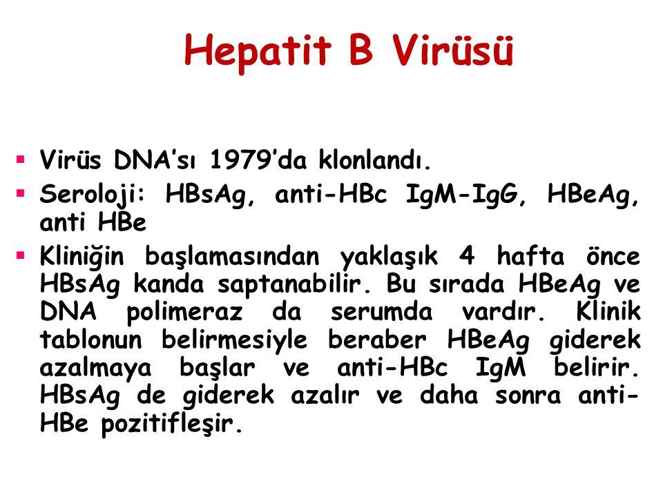 Hepatit B Virüsü  Virüs DNA'sı 1979'da klonlandı.  Seroloji: HBsAg, anti-HBc IgM-IgG, HBeAg, anti HBe  Kliniğin başlamasından yaklaşık 4 hafta önce