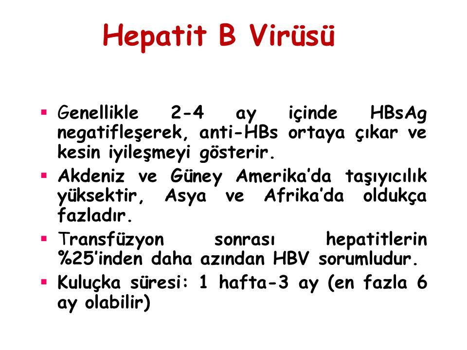 Hepatit B Virüsü  Genellikle 2-4 ay içinde HBsAg negatifleşerek, anti-HBs ortaya çıkar ve kesin iyileşmeyi gösterir.  Akdeniz ve Güney Amerika'da ta