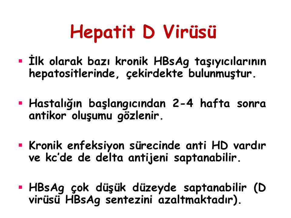 Hepatit D Virüsü  İlk olarak bazı kronik HBsAg taşıyıcılarının hepatositlerinde, çekirdekte bulunmuştur.  Hastalığın başlangıcından 2-4 hafta sonra
