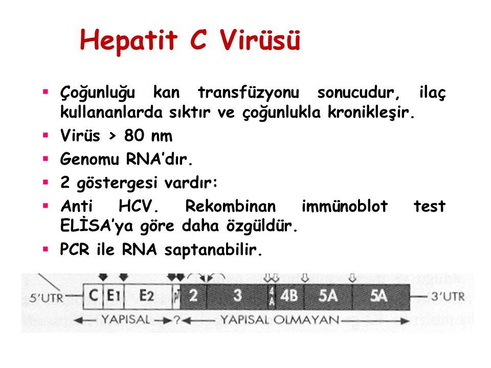 Hepatit C Virüsü  Çoğunluğu kan transfüzyonu sonucudur, ilaç kullananlarda sıktır ve çoğunlukla kronikleşir.  Virüs > 80 nm  Genomu RNA'dır.  2 gö