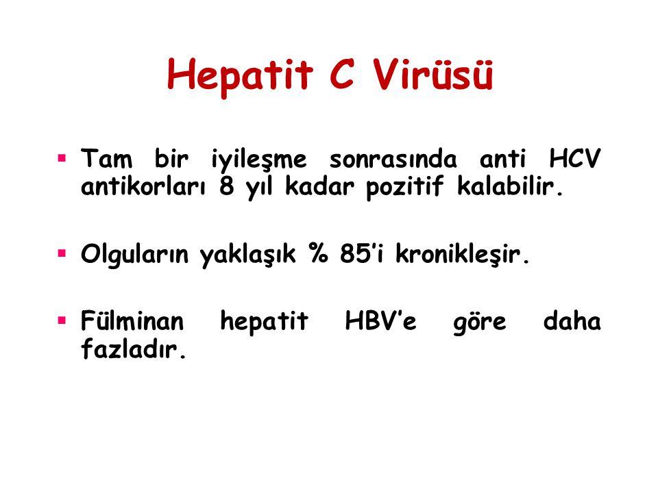 Hepatit C Virüsü  Tam bir iyileşme sonrasında anti HCV antikorları 8 yıl kadar pozitif kalabilir.  Olguların yaklaşık % 85'i kronikleşir.  Fülminan