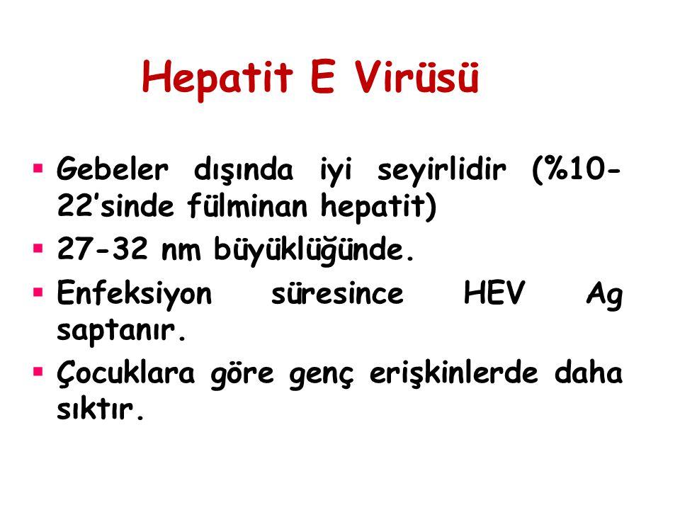 Hepatit E Virüsü  Gebeler dışında iyi seyirlidir (%10- 22'sinde fülminan hepatit)  27-32 nm büyüklüğünde.  Enfeksiyon süresince HEV Ag saptanır. 