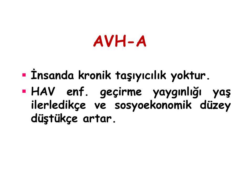 AVH-A  İnsanda kronik taşıyıcılık yoktur.  HAV enf. geçirme yaygınlığı yaş ilerledikçe ve sosyoekonomik düzey düştükçe artar.