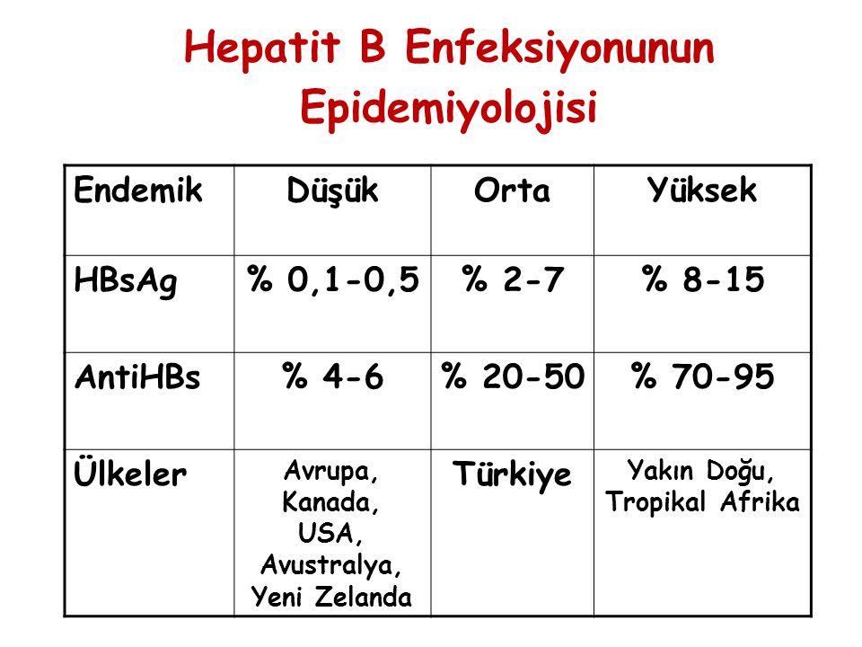 Hepatit B Enfeksiyonunun Epidemiyolojisi EndemikDüşükOrtaYüksek HBsAg% 0,1-0,5% 2-7% 8-15 AntiHBs% 4-6% 20-50% 70-95 Ülkeler Avrupa, Kanada, USA, Avus
