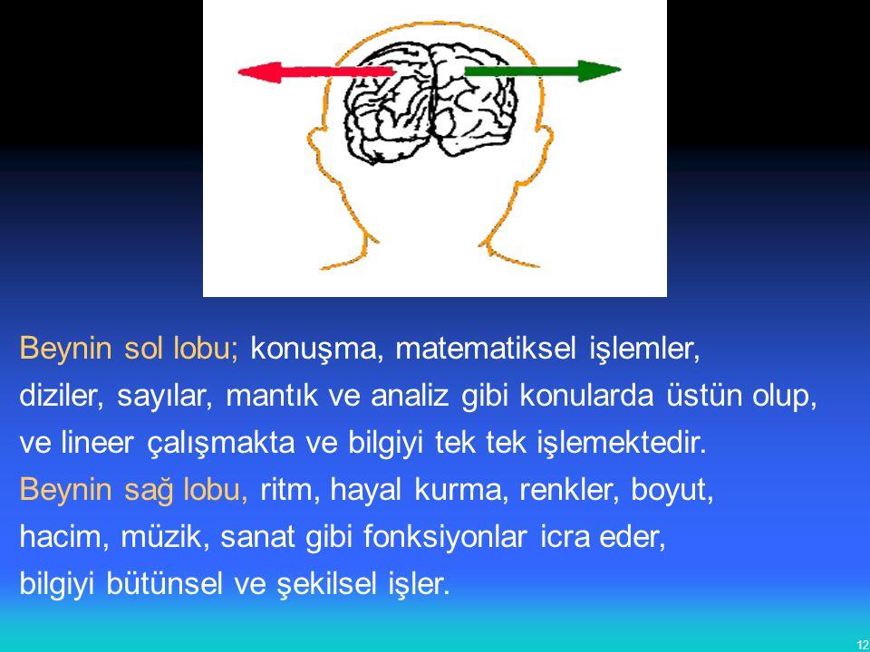 12 Beynin sol lobu; konuşma, matematiksel işlemler, diziler, sayılar, mantık ve analiz gibi konularda üstün olup, ve lineer çalışmakta ve bilgiyi tek