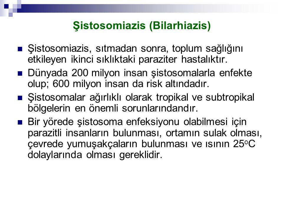 Şistosomiazis (Bilarhiazis) Şistosomiazis, sıtmadan sonra, toplum sağlığını etkileyen ikinci sıklıktaki paraziter hastalıktır. Dünyada 200 milyon insa
