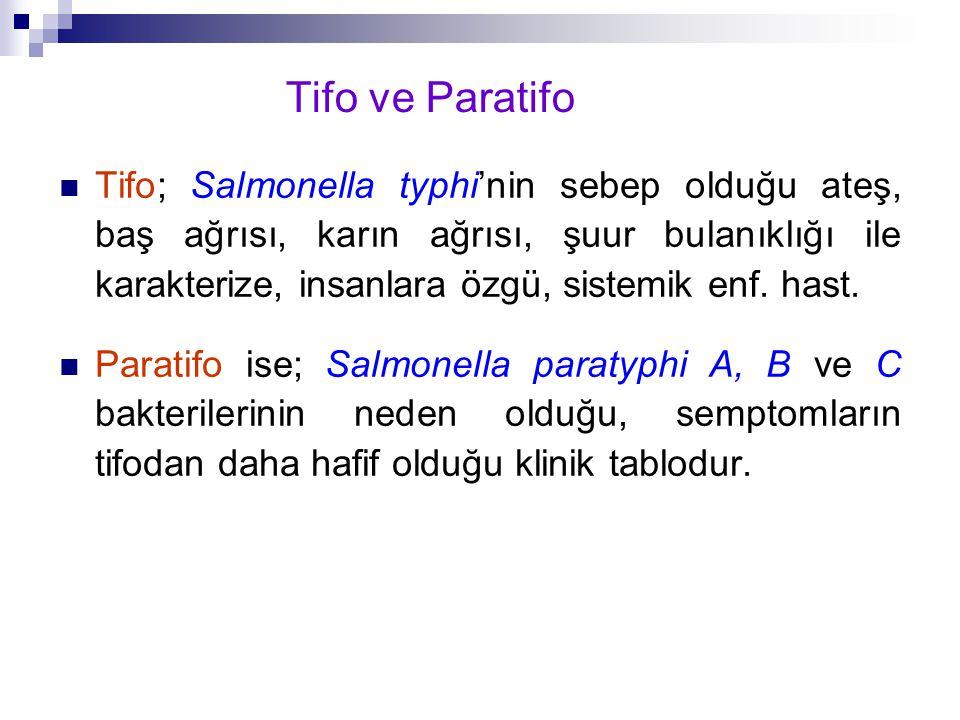 Tifo ve Paratifo Tifo; Salmonella typhi'nin sebep olduğu ateş, baş ağrısı, karın ağrısı, şuur bulanıklığı ile karakterize, insanlara özgü, sistemik en