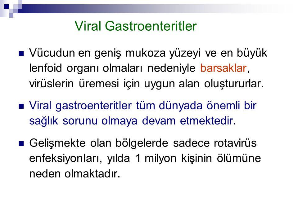 Viral Gastroenteritler Vücudun en geniş mukoza yüzeyi ve en büyük lenfoid organı olmaları nedeniyle barsaklar, virüslerin üremesi için uygun alan oluş