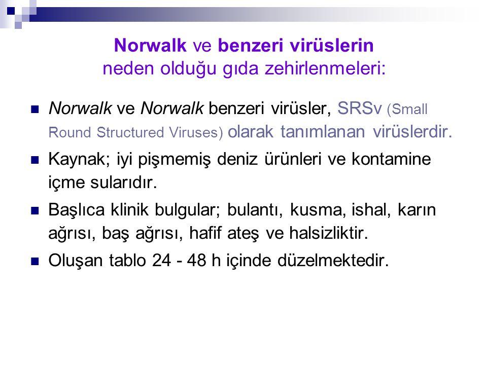 Norwalk ve benzeri virüslerin neden olduğu gıda zehirlenmeleri: Norwalk ve Norwalk benzeri virüsler, SRSv (Small Round Structured Viruses) olarak tanı
