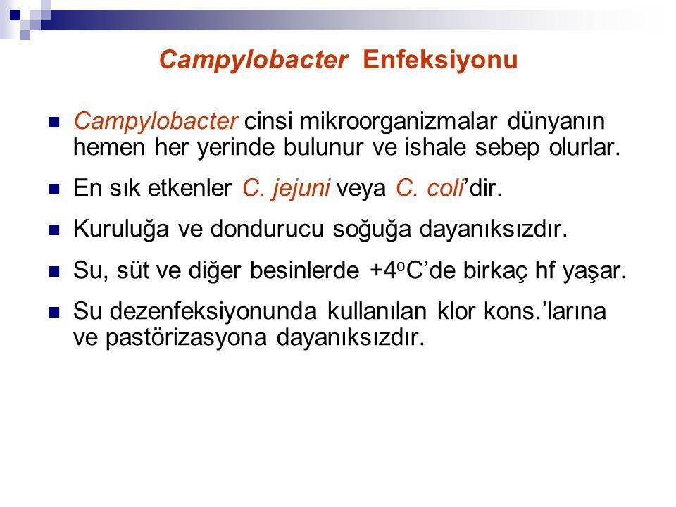 Campylobacter Enfeksiyonu Campylobacter cinsi mikroorganizmalar dünyanın hemen her yerinde bulunur ve ishale sebep olurlar. En sık etkenler C. jejuni