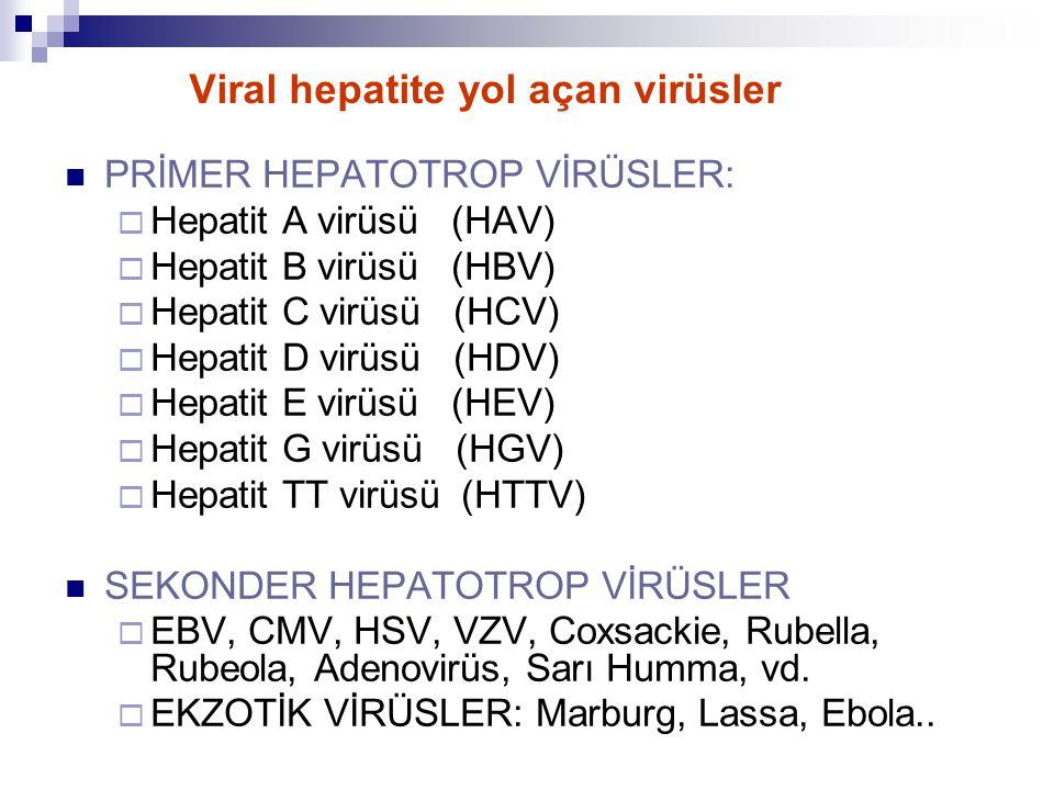 Viral hepatite yol açan virüsler PRİMER HEPATOTROP VİRÜSLER:  Hepatit A virüsü (HAV)  Hepatit B virüsü (HBV)  Hepatit C virüsü (HCV)  Hepatit D vi