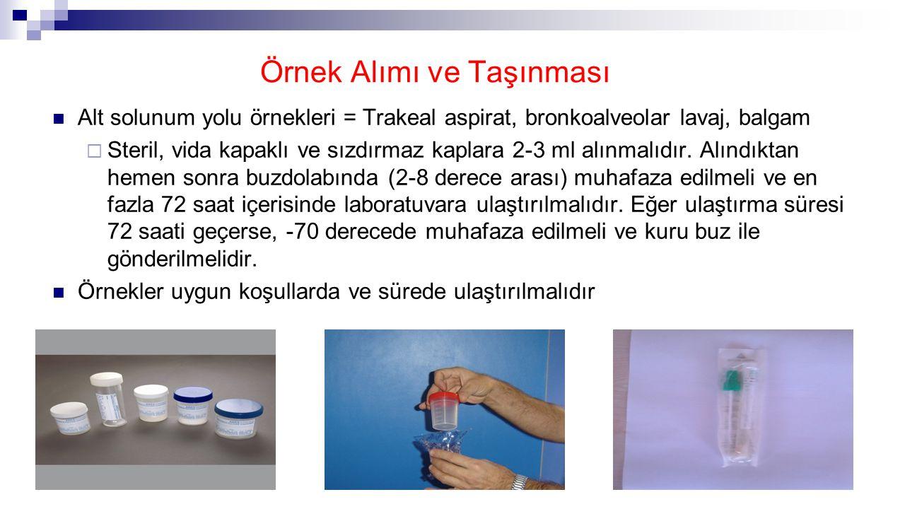 Örnek Alımı ve Taşınması Alt solunum yolu örnekleri = Trakeal aspirat, bronkoalveolar lavaj, balgam  Steril, vida kapaklı ve sızdırmaz kaplara 2-3 ml alınmalıdır.