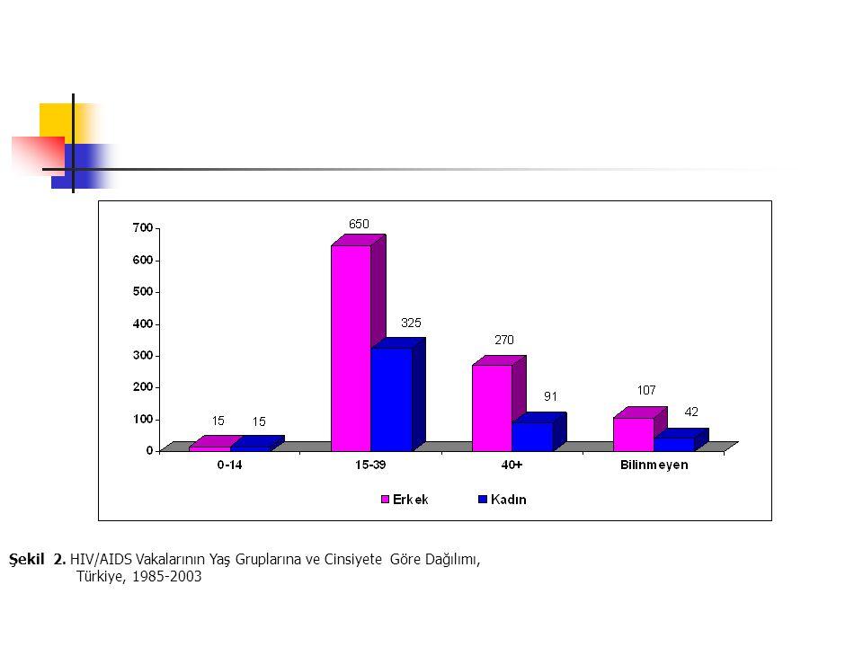 Şekil 2. HIV/AIDS Vakalarının Yaş Gruplarına ve Cinsiyete Göre Dağılımı, Türkiye, 1985-2003