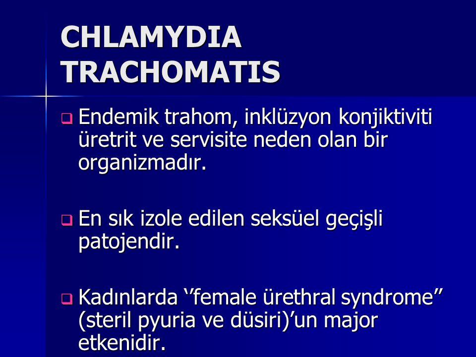 CHLAMYDIA TRACHOMATIS  Endemik trahom, inklüzyon konjiktiviti üretrit ve servisite neden olan bir organizmadır.  En sık izole edilen seksüel geçişli