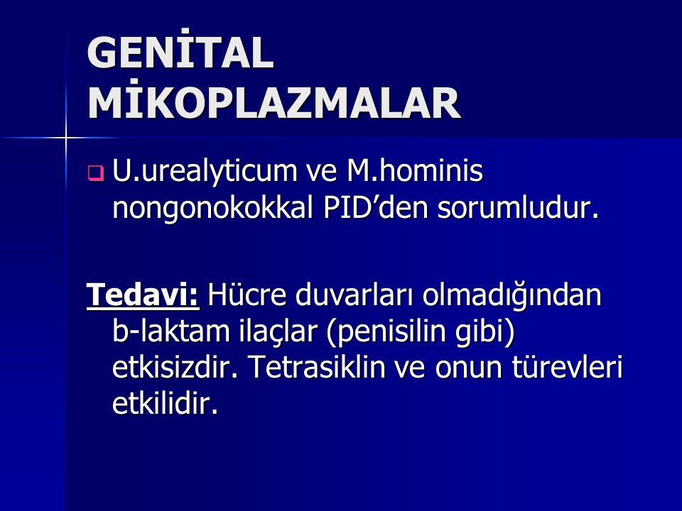 GENİTAL MİKOPLAZMALAR  U.urealyticum ve M.hominis nongonokokkal PID'den sorumludur. Tedavi: Hücre duvarları olmadığından b-laktam ilaçlar (penisilin