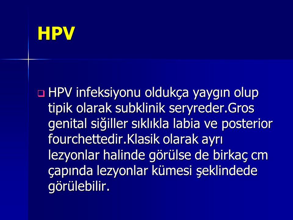 HPV  HPV infeksiyonu oldukça yaygın olup tipik olarak subklinik seryreder.Gros genital siğiller sıklıkla labia ve posterior fourchettedir.Klasik olar