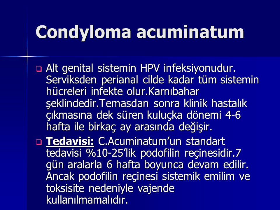 Condyloma acuminatum  Alt genital sistemin HPV infeksiyonudur. Serviksden perianal cilde kadar tüm sistemin hücreleri infekte olur.Karnıbahar şeklind