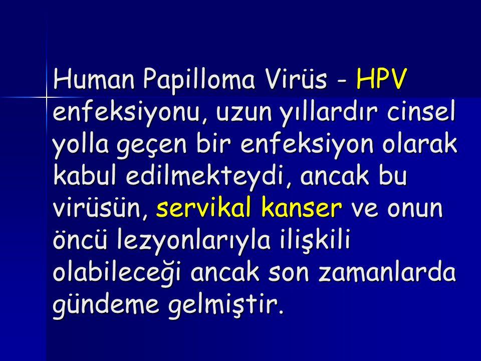 Human Papilloma Virüs - HPV enfeksiyonu, uzun yıllardır cinsel yolla geçen bir enfeksiyon olarak kabul edilmekteydi, ancak bu virüsün, servikal kanser