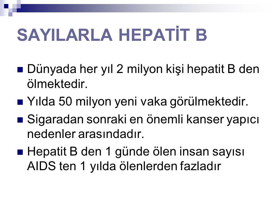 SAYILARLA HEPATİT B Dünyada her yıl 2 milyon kişi hepatit B den ölmektedir. Yılda 50 milyon yeni vaka görülmektedir. Sigaradan sonraki en önemli kanse