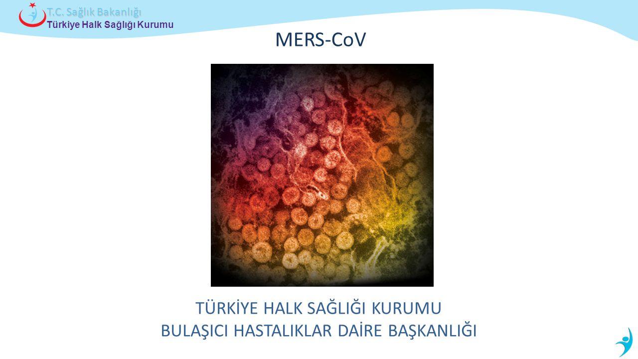 Türkiye Halk Sağlığı Kurumu T.C.Sağlık Bakanlığı Tedavi Etkili antiviral YOK.