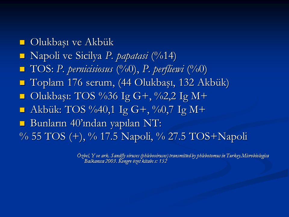 Olukbaşı ve Akbük Olukbaşı ve Akbük Napoli ve Sicilya P. papatasi (%14) Napoli ve Sicilya P. papatasi (%14) TOS: P. pernicisiosus (%0), P. perfliewi (