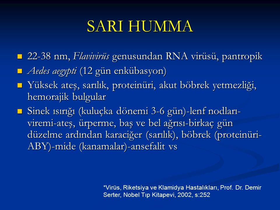 SARI HUMMA 22-38 nm, Flavivirüs genusundan RNA virüsü, pantropik 22-38 nm, Flavivirüs genusundan RNA virüsü, pantropik Aedes aegypti (12 gün enkübasyo