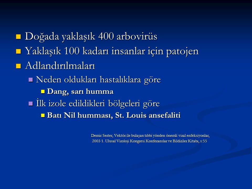ARBOVİRÜS ENFEKSİYONLARI 1.Büyük bölümü asemptomatik 2.