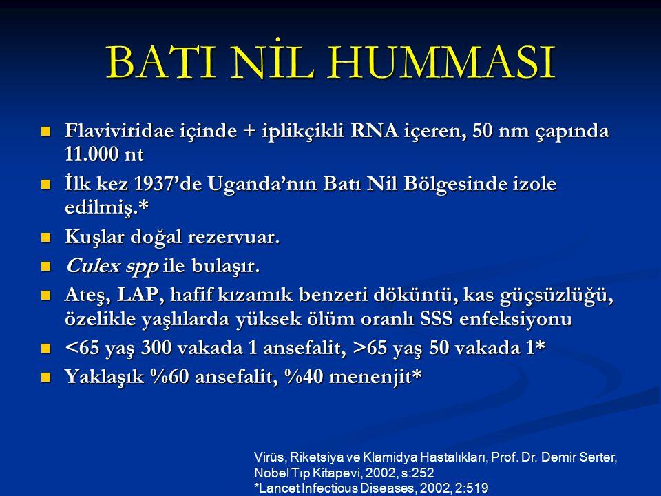 BATI NİL HUMMASI Flaviviridae içinde + iplikçikli RNA içeren, 50 nm çapında 11.000 nt Flaviviridae içinde + iplikçikli RNA içeren, 50 nm çapında 11.00