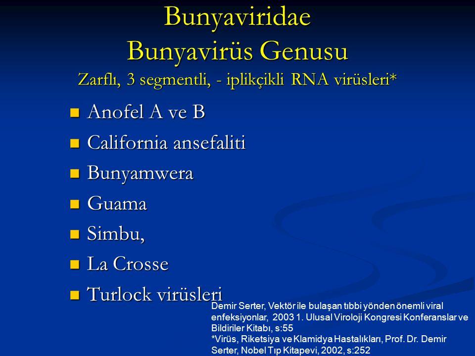 Bunyaviridae Bunyavirüs Genusu Zarflı, 3 segmentli, - iplikçikli RNA virüsleri* Anofel A ve B Anofel A ve B California ansefaliti California ansefalit