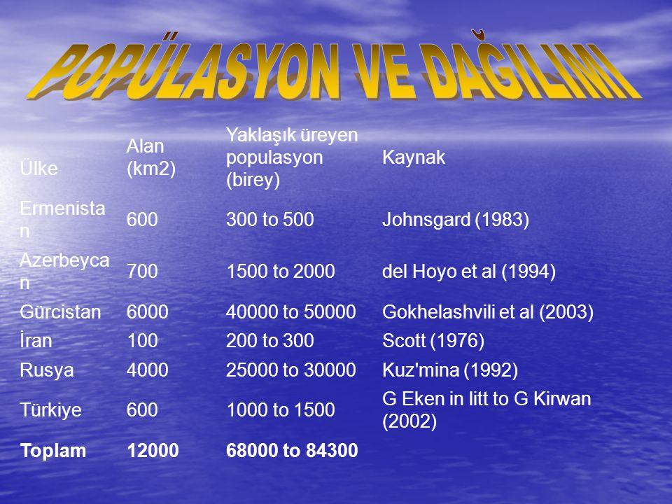 Ülke Alan (km2) Yaklaşık üreyen populasyon (birey) Kaynak Ermenista n 600300 to 500Johnsgard (1983) Azerbeyca n 7001500 to 2000del Hoyo et al (1994) G